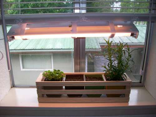 Artificial Light for Your Indoor Herb Garden