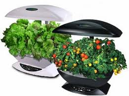 Aerogarden – A Revolutionary Product For Indoor Herb Garden