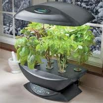Benefits Of Aeroponic Technology For Indoor Herb Garden