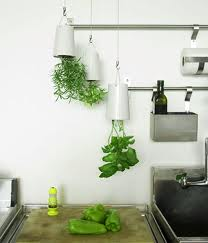 Creative Upside Down Indoor Herb Garden