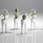 Innovative Garden Ideas Bottle Indoor Herb Garden Design