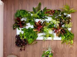 Urbio Indoor Vertical Garden – Amazing Idea Of Gardening