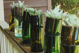 Herb Garden Of Reused Wine Bottles