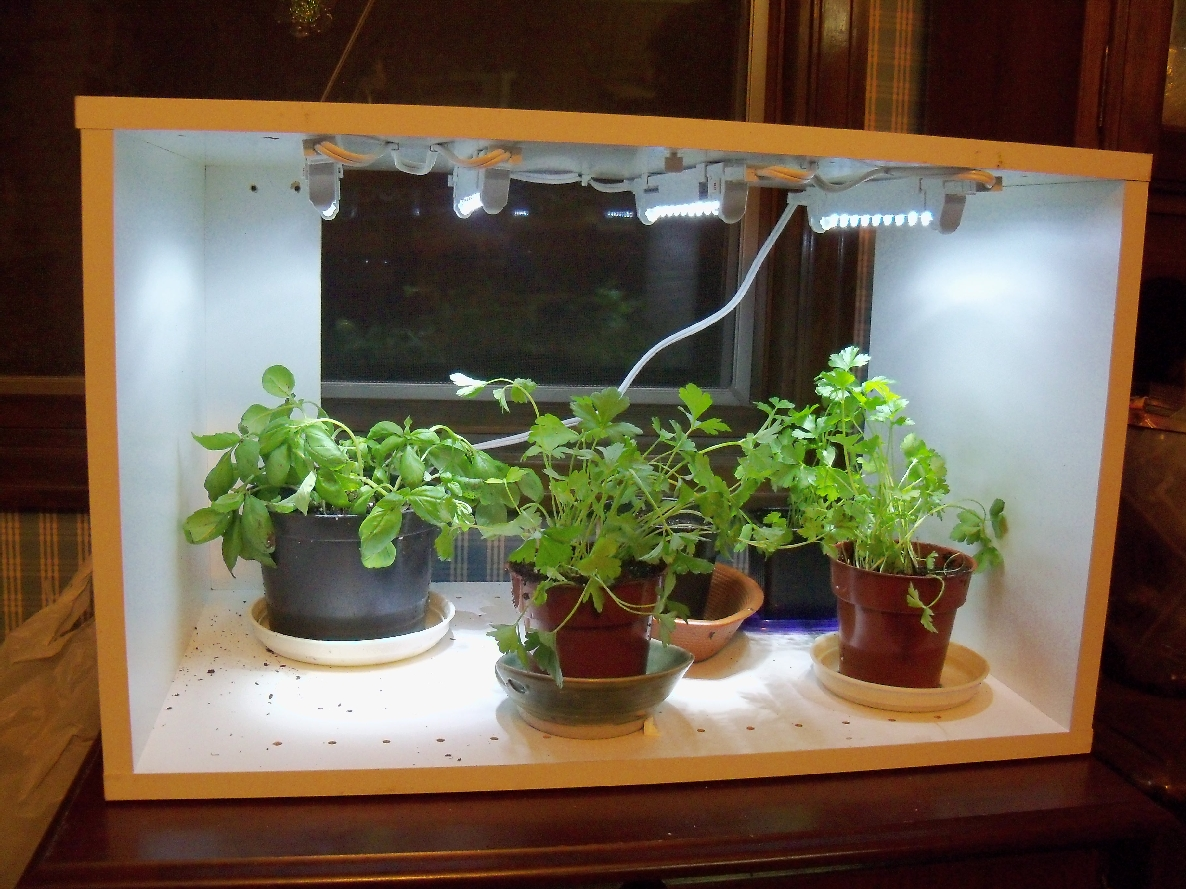 Fluorescent Lighting for Your Indoor Herb Garden